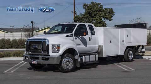 New 2019 Ford F650 Lo Profile